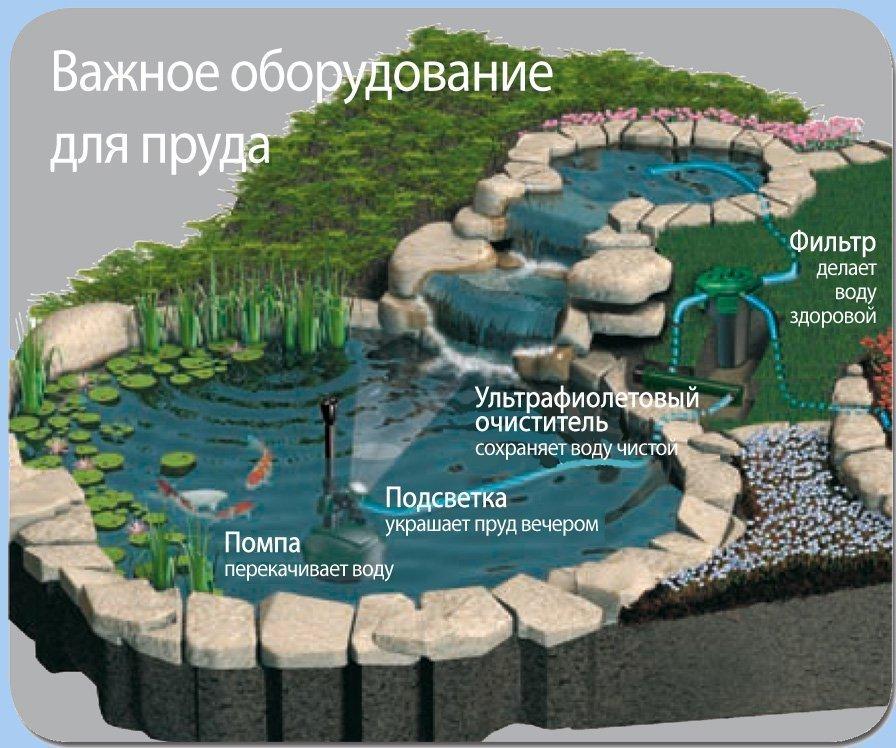 Методы очистки пруда