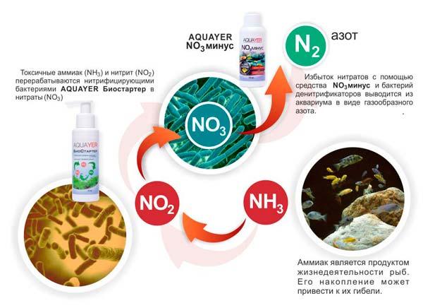 Уровень нитратов в аквариуме