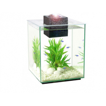 фото аквариум хаген