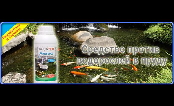 Средство от водорослей в пруду AQUAYER Альгокс 1 л